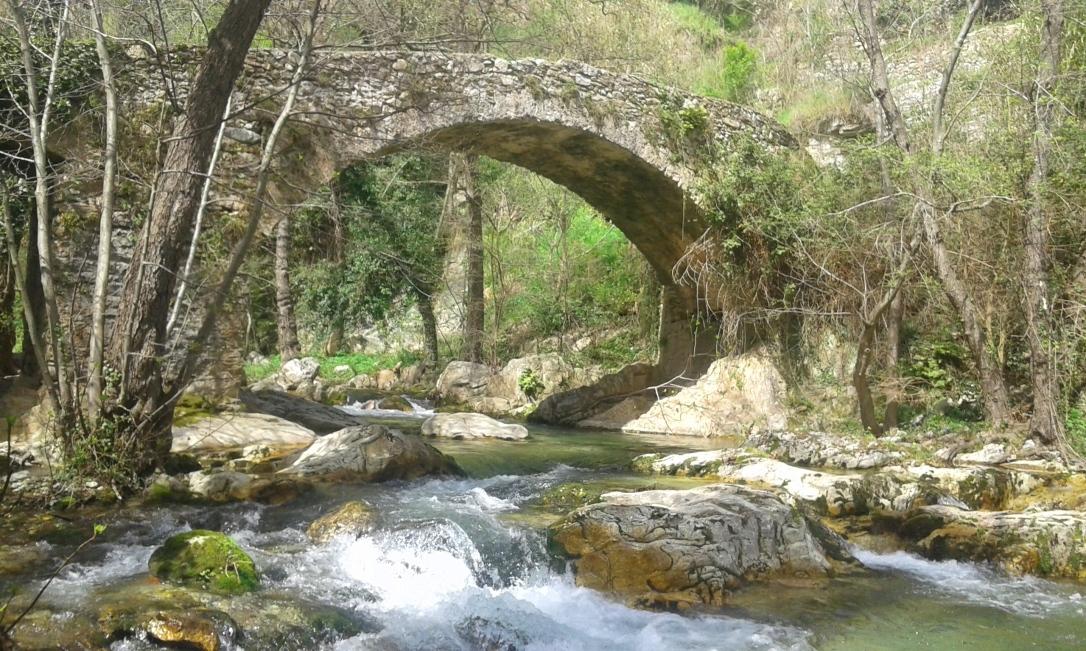 Ponte_Erli - Copia